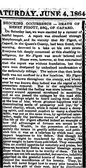 Leinster Express article on accidental drowning of Henry Pierce Pigott, 4 June 1864